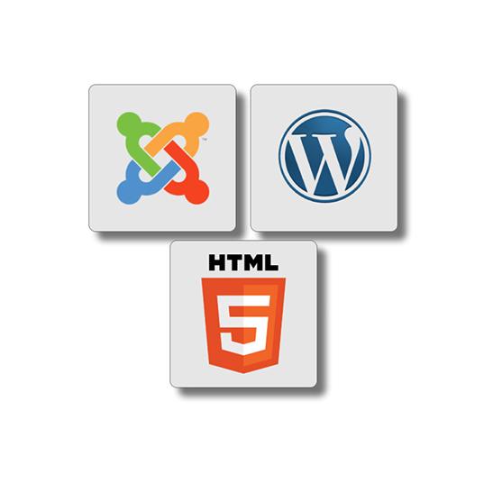 Rápida implementación en cualquier tipo de sistema web